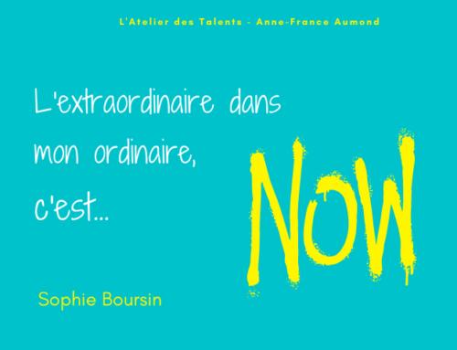 L'Extraordinaire dans mon Ordinaire de Sophie Boursin